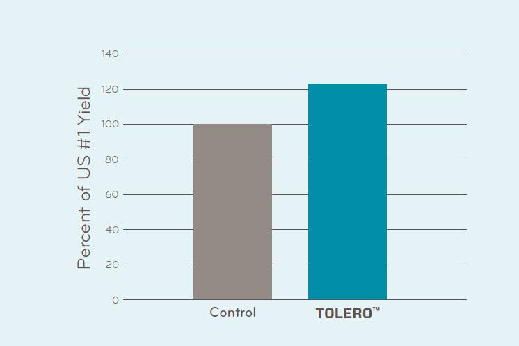 Potato Trial Data Tolero