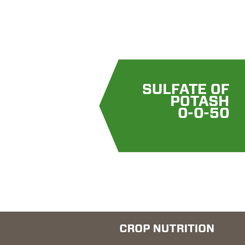 Sulfate of Potash