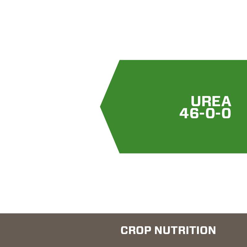 Urea Nitrogen Fertilizer